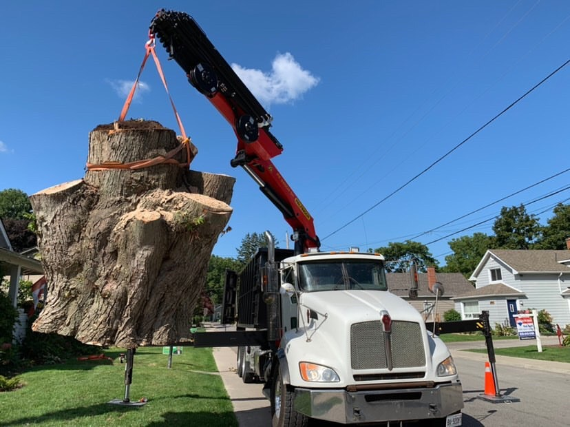 Crane Truck Tree Removals - Safe Tree Niagara
